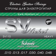 Струны для электрогитары Fedosov SV 110 10-48