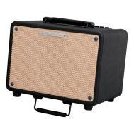 Комбоусилитель для акустической гитары Ibanez T30