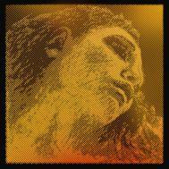 Струна для скрипки Pirastro 315421 Violin EVAH PIRAZZI GOLD - E.