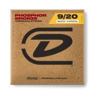 Струны для банджо Dunlop DJP0920