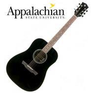 Гитара акустическая Alhambra W-100B
