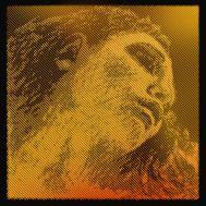 """Струны для скрипки Pirastro """"Evah Pirazzi Gold"""" G-Gold 415021 (4/4)"""